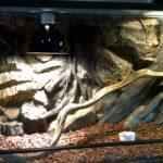 Aquarium-Terrarium